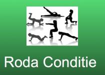 Roda Conditie